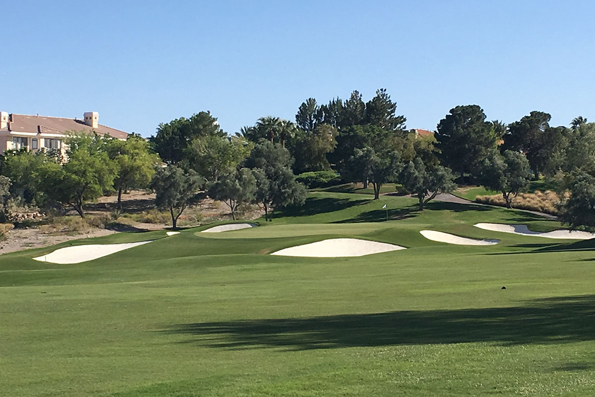 fairway at TPC Summerlin
